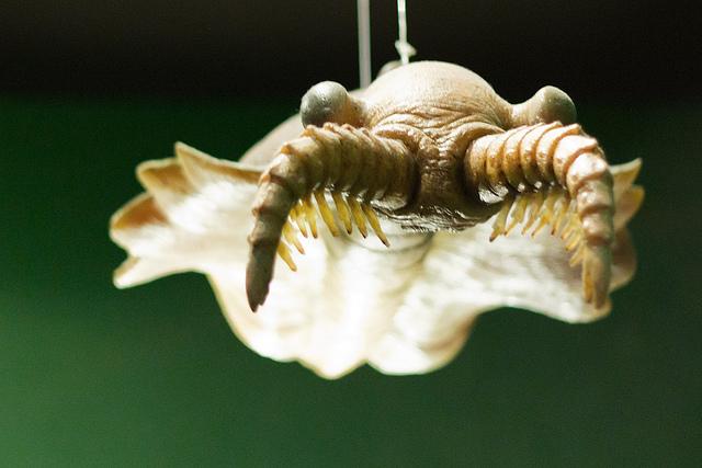 Urwesen im kambrischen Meer vor 500 Millionen Jahren: Anomalocaris